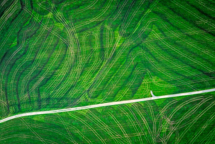Aerial Agriculture-10