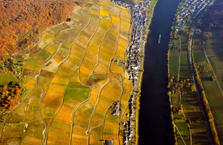 Aerial Autumn-2