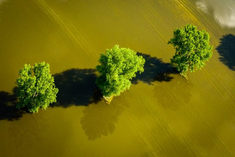 Aerial Flood-10